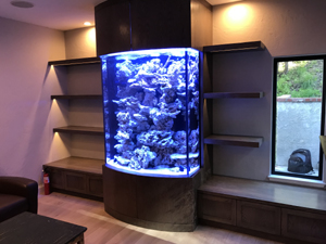 "60"" Tall Custom Live Rock Sculpture Tank"